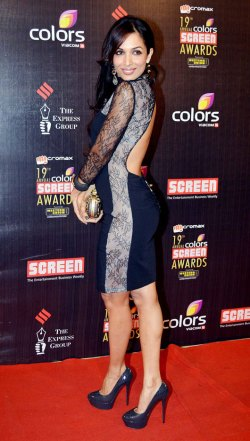 Red Carpet Events « Indian Fashion Police